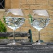Pair of Giant Gin Glasses