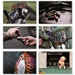 Shooting Placemats - Set of Six