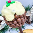 Personalised Christmas Pudding Tree