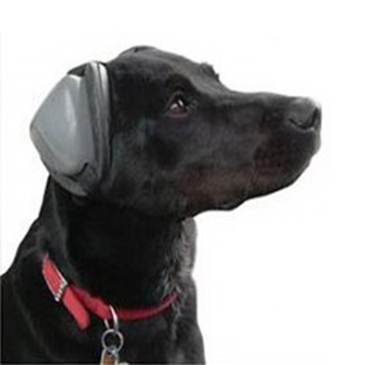 Dog Ear Defenders
