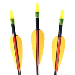 Set of 3 Archery Arrows
