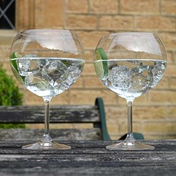giant gin glasses 6
