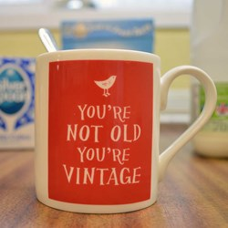 You're Not Old, You're Vintage Mug