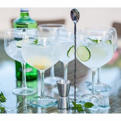 Gin & Tonic Party Glass Set