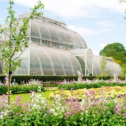 Visit to Kew Gardens and Palace for Two