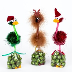 Crazy Bird Pens With Chocolate Sprouts