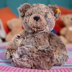 Steiff Soft Cuddly Terry The Bear