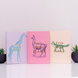 Set of 3 Journals: A5 Soft Touch Notebooks