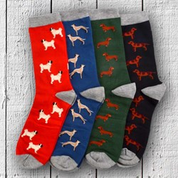 Dog Lovers Men's Bamboo Socks Gift Box Set