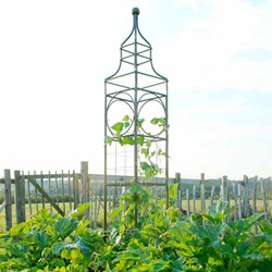 Big Ben Plant Frame