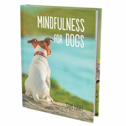 Mindfulness For Dogs | Woof Wellbeing