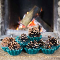Pine Cone Fire Starters | Set Of 10