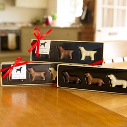 Set of 6 Chocolate Dogs | Labrador - Dachshund - Spaniel