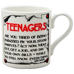 The 'Teenagers' Mug - WHATEVER!