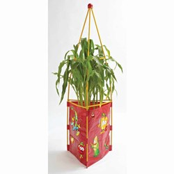 Tri-Gro Kids Planters & Seeds