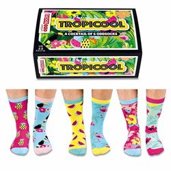 Tropicool Odd Socks for Ladies | A Cocktail of Six Designs