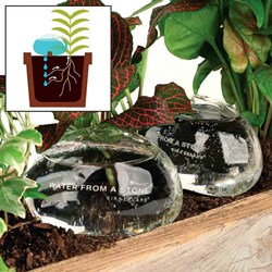 Water Stones - Set of two plant watering glass stones!