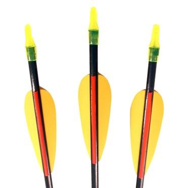Set of 3 Archery Arrows
