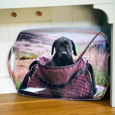 Labrador Puppy in Game Bag Tray