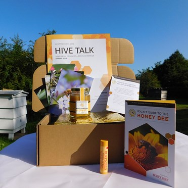 Adopt a Bee Hive