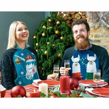 Christmas Dinner Bibs
