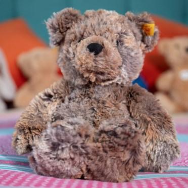 Steiff Soft Cuddly Terry The Bear