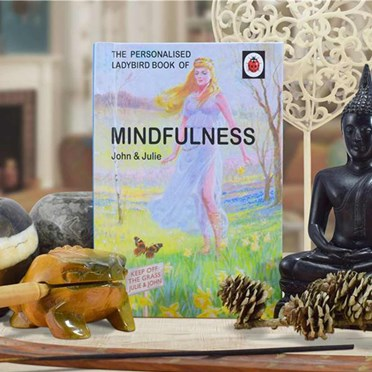 Personalised Ladybird Book of Mindfulness - For Couples