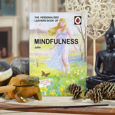 Personalised Ladybird Book of Mindfulness - For Him