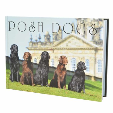 Posh Dogs The Book