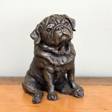 An image of Pug Bronze Sculpture