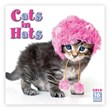 Cats in Hats Calendar 2018