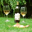 Picnic Stix Bottle and Glass Holder